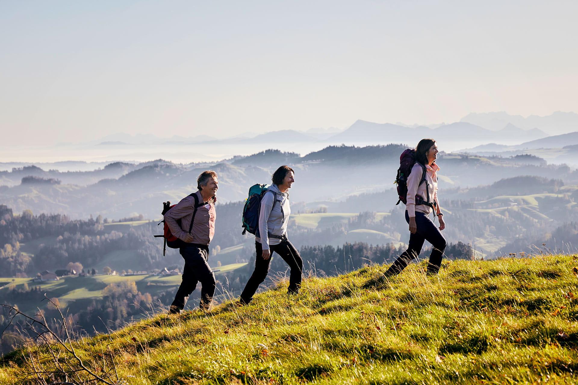 Eine Gruppe wandert in der Napfregion über saftige Wiesen und idyllische Hügel.