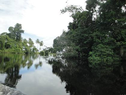 Nationalpark Tortuguero