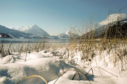 Snowy shore of Lake Thun, snow covered Niesen mountain in the background