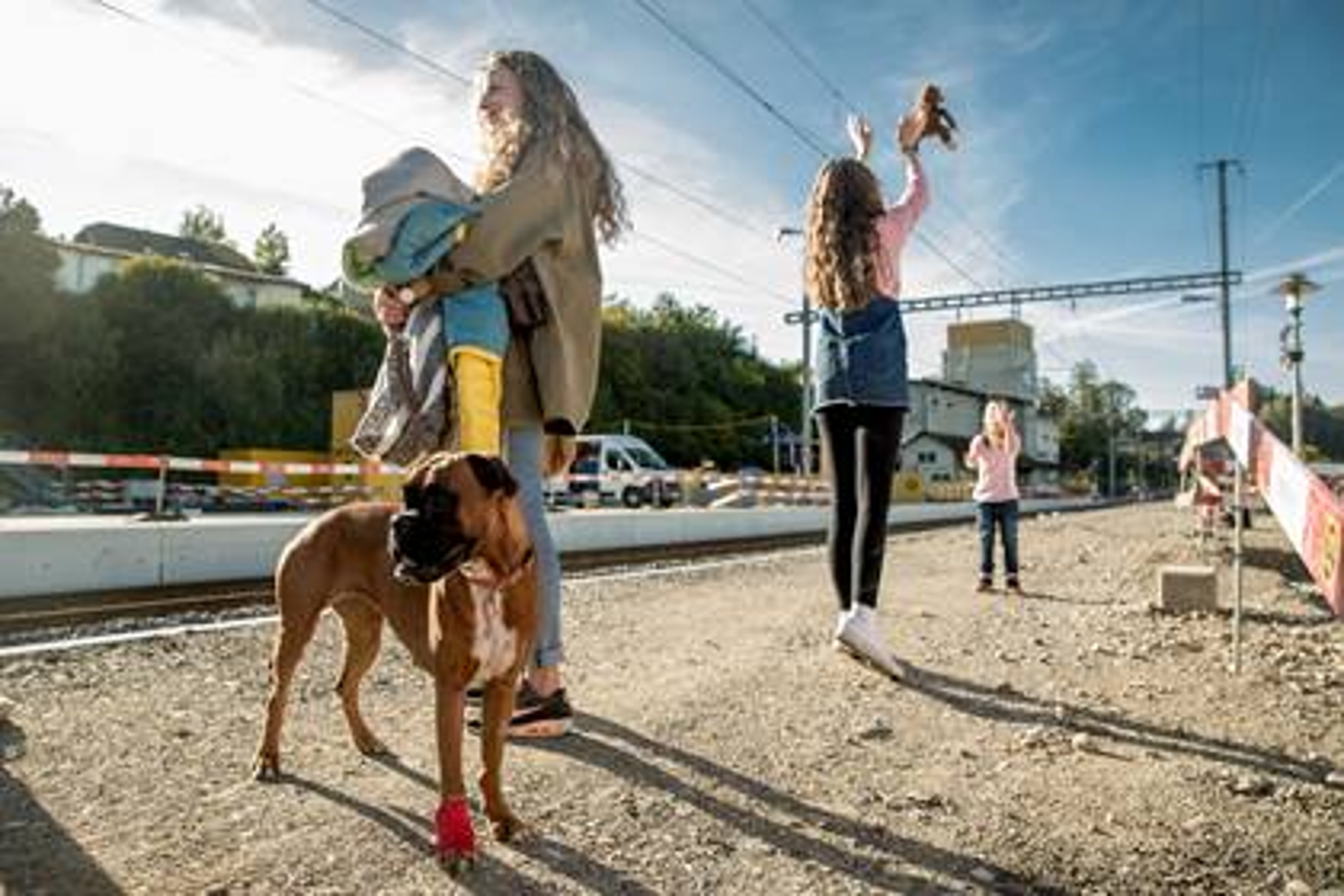 Fahrgastinfo Hunde