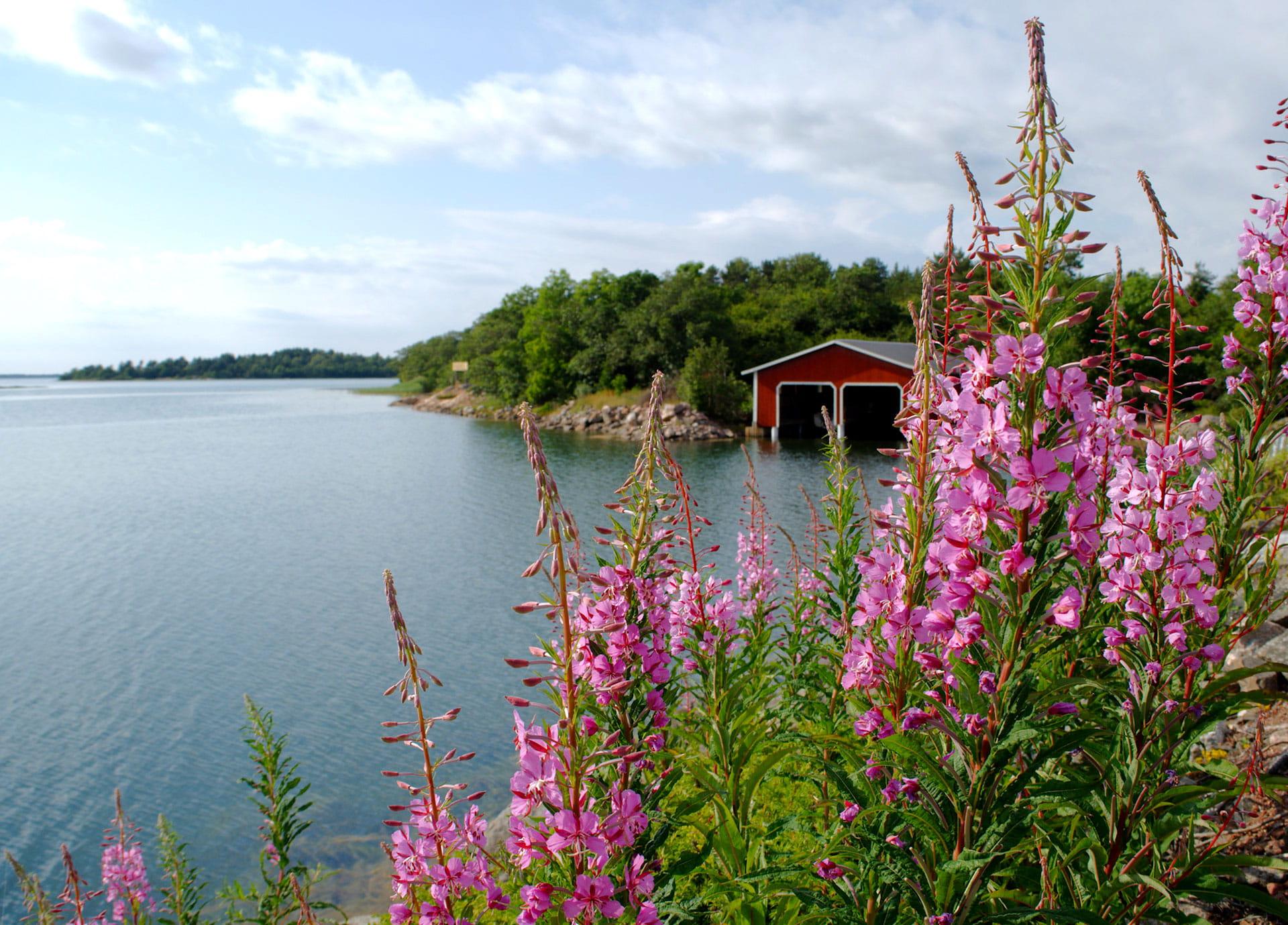 Aktivferien-Velo: Finnlands Inselwelten